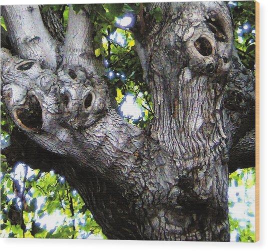 Tree With A Heart Wood Print by Dan Twyman