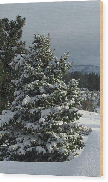 Tree With Snow Wood Print