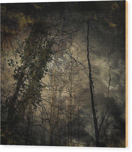 Trees 4 Wood Print