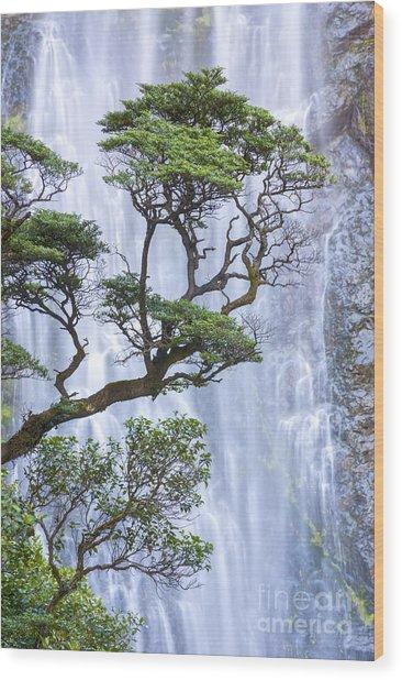 Trees And Waterfall Wood Print