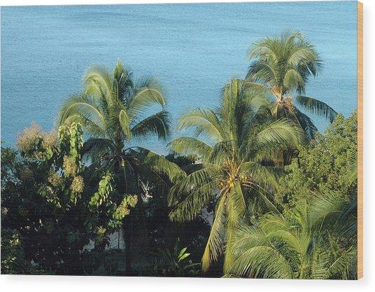 Trees At The Beach Wood Print