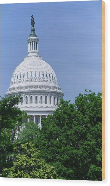 Trees In Spring And U.s. Capitol Dome Wood Print