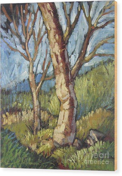 Trees In Spring Wood Print