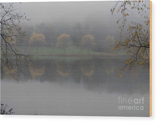 Trees In The Fog Wood Print by Stephanie Emond