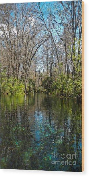 Trees In Water Wood Print