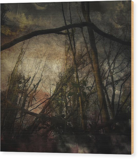 Trees No. 5 Wood Print