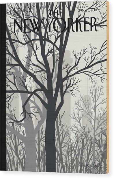 Sunlight On Twenty-third Street Wood Print by Jorge Colombo
