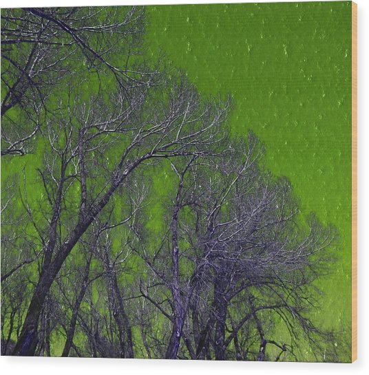 Trees On Green Sky Wood Print