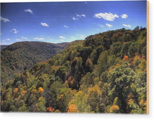 Trees Over Rolling Hills Wood Print