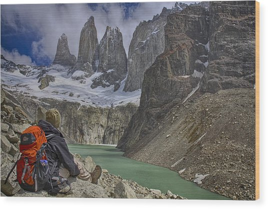 Trek To Torres Del Paine Wood Print