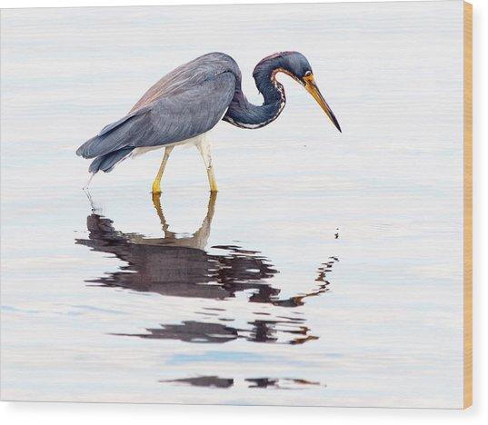 Tri-color Heron Wood Print