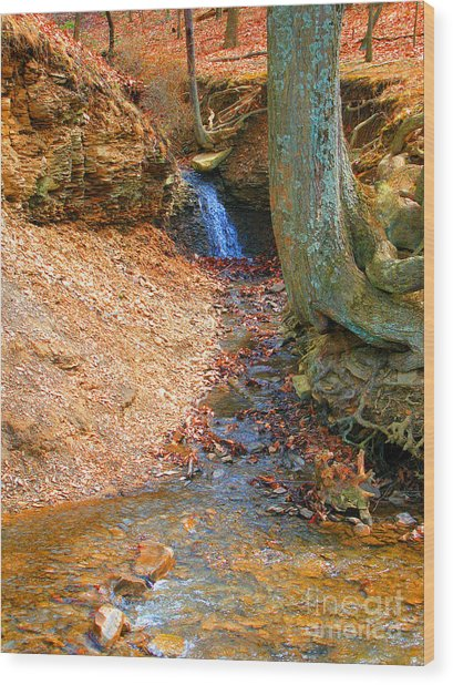 Trickling Waterfall By Shellhammer Wood Print