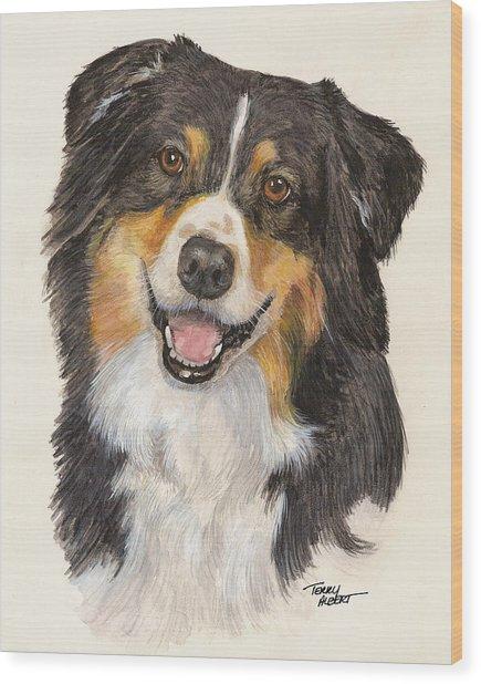 Tricolor Australian Shepherd Wood Print