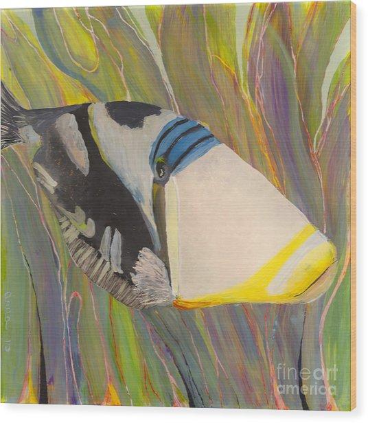 Triggerfish 2 Wood Print