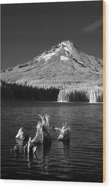 Trillium Lake Wood Print