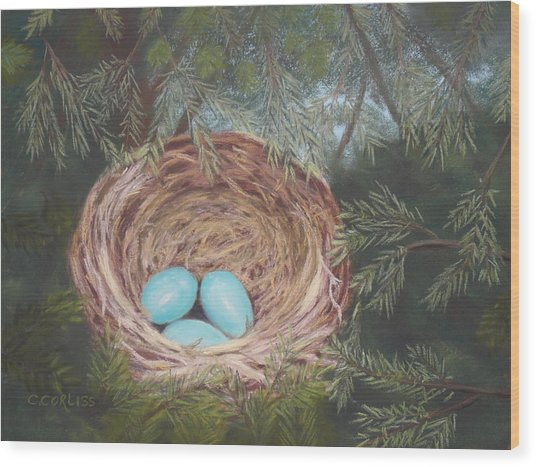 Triplets Wood Print