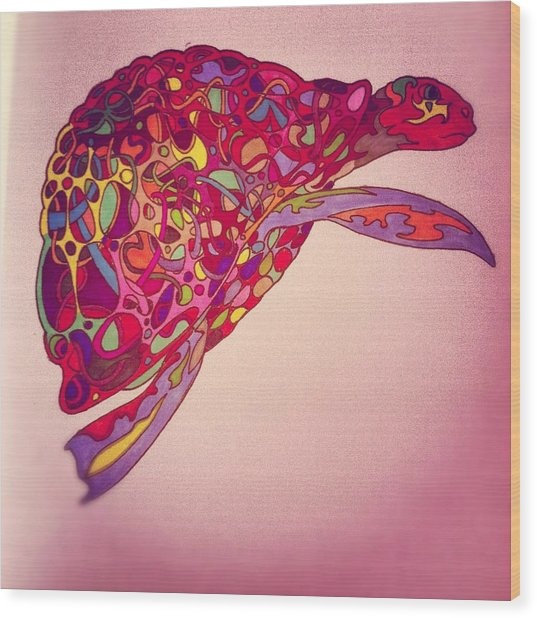 Trippy Turtle Photograph by Gabriella Kovtun