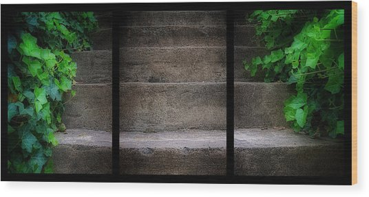 Triptych Ivy Steps Wood Print