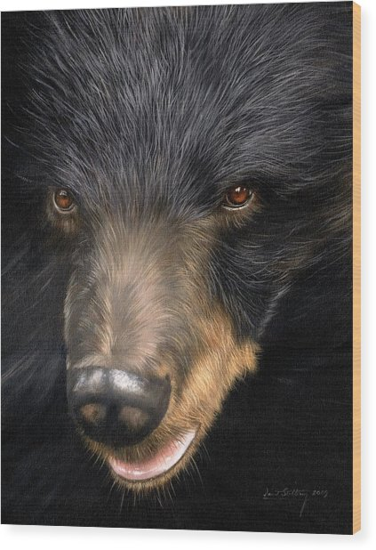 Trixie Moon Bear - In Support Of Animals Asia Wood Print