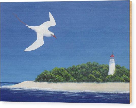 Tropic Bird And Light House Wood Print
