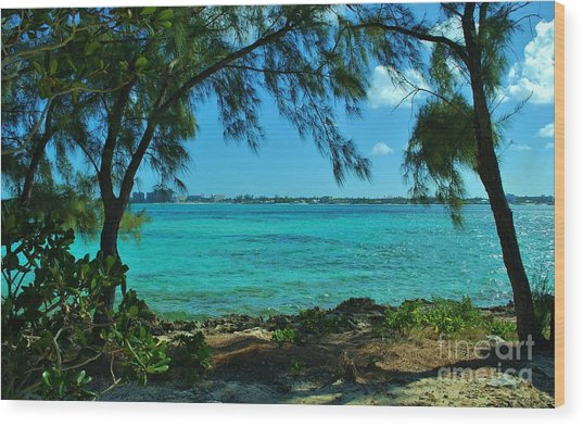 Tropical Aqua Blue Waters  Wood Print