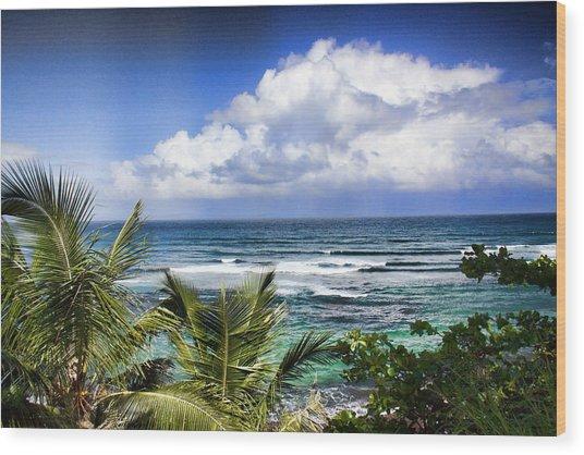 Tropical Dreams Wood Print