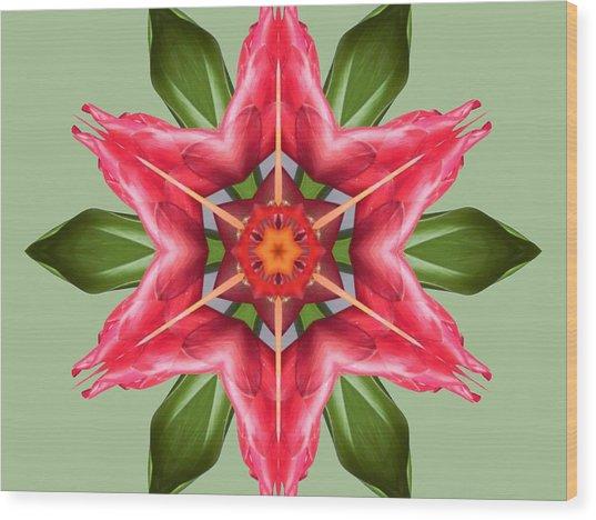 Tropical Flower Mandala Wood Print