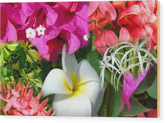 Tropical Flower Power 2 Wood Print