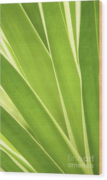 Tropical Leaves Wood Print