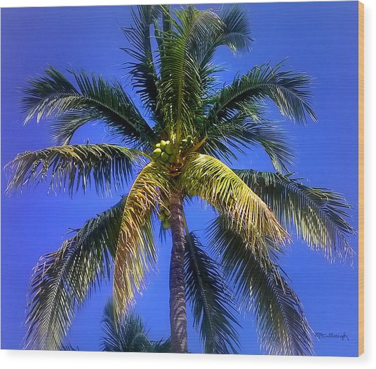 Tropical Palm Trees 8 Wood Print