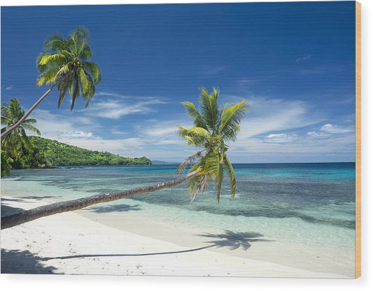Tropical White Sand Beach Wood Print
