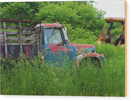 Truck Plant Wood Print by Kenneth Feliciano