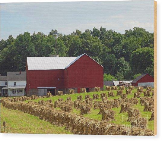 True Amish Farm Wood Print