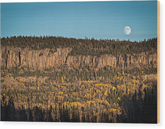 Wood Print featuring the photograph True Grit by Doug Gibbons