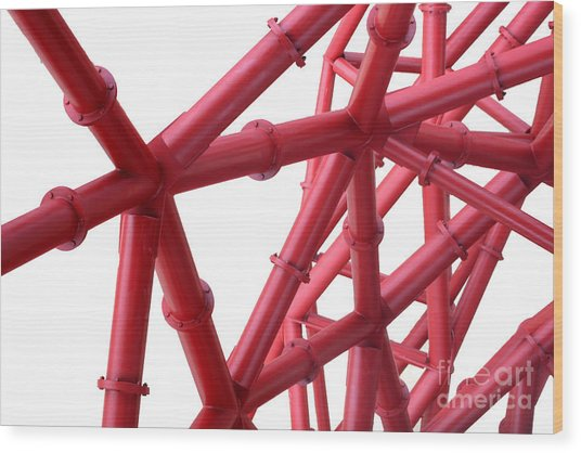Tubes Wood Print by Roger Lighterness