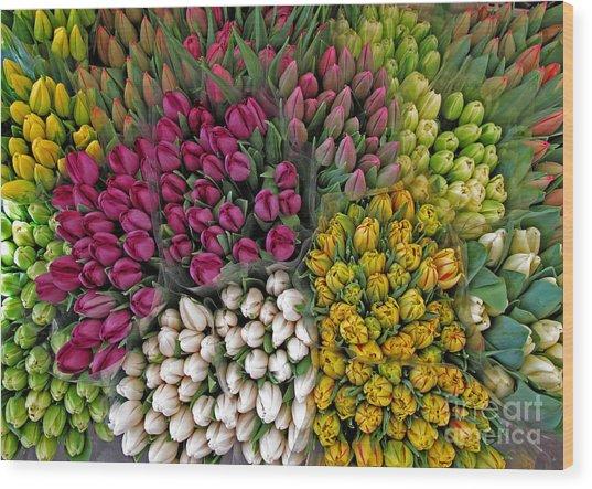 Tulip Jamboree Wood Print