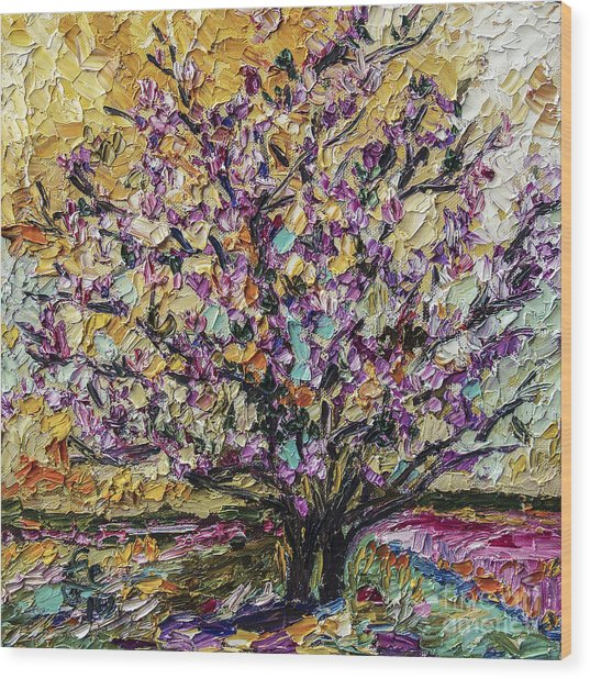 Tulip Magnolia Tree Wood Print