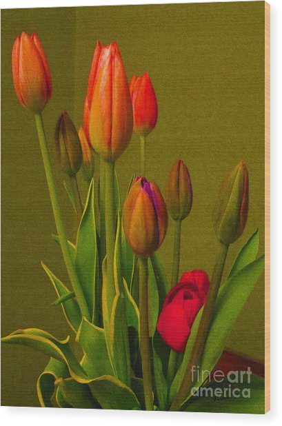 Tulips Against Green Wood Print