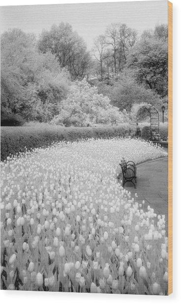 Tulips And Bench II Wood Print