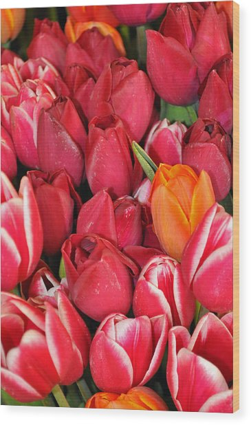 Tulips In Pike Place Market Wood Print