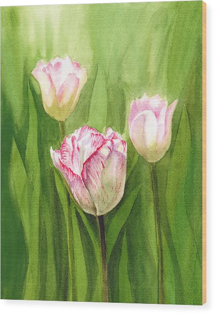 Tulips In The Fog Wood Print