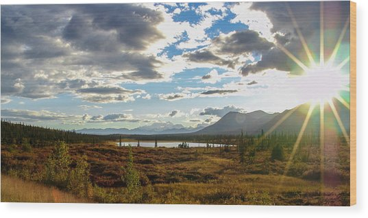 Tundra Burst Wood Print