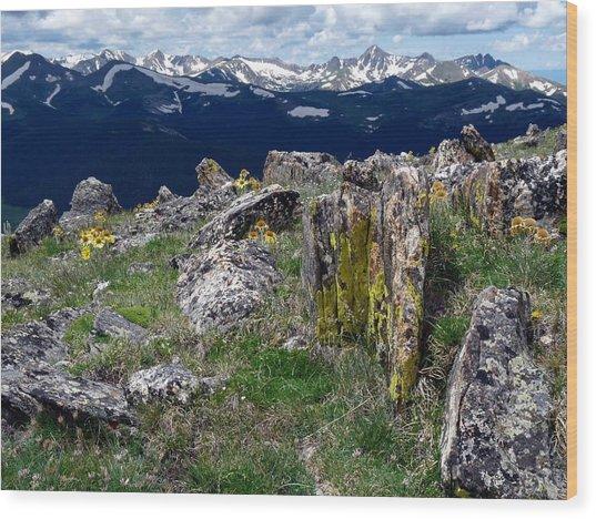 Tundra Views Wood Print