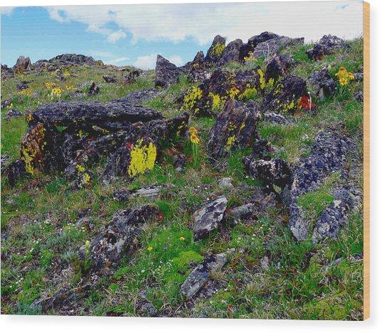 Tundra Yellows Wood Print