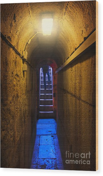 Tunnel Exit Wood Print