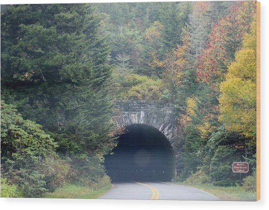 Tunnel On Parkway Wood Print by Melony McAuley