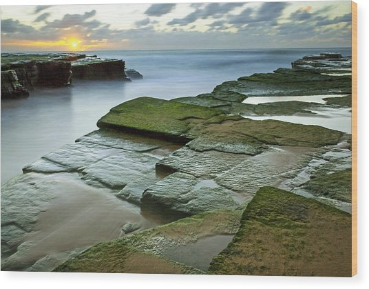 Turimetta Beach Sunrise Wood Print