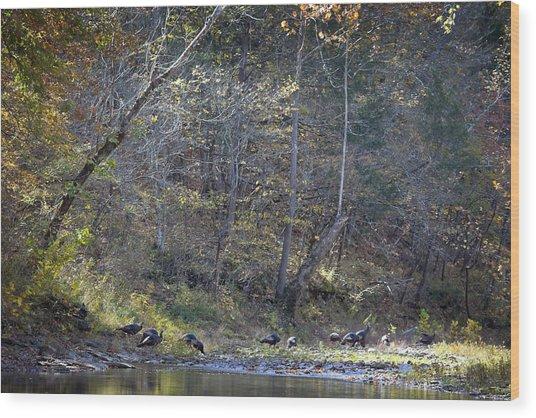 Turkey Crossing At Big Hollow Wood Print