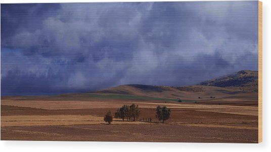 Turkish Landscape From Antalya To Konya  Wood Print by Jacqueline M Lewis