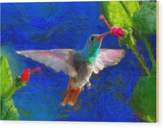 Da052 Turkscap Hummingbird  Wood Print